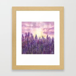 Lavender Field At Dusk Framed Art Print