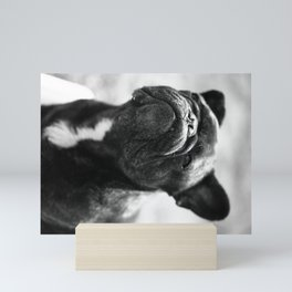 French Bulldog Mini Art Print