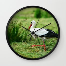 Stork Bird Animal Wall Clock