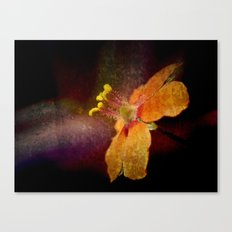 Dark Orange Canvas Print