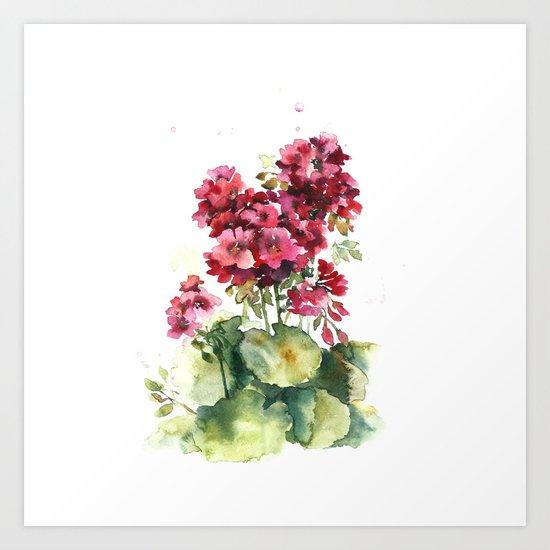 Watercolor geranium flowers Art Print