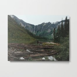 Avalanche Lake Logs, Glacier National Park, Montana Metal Print