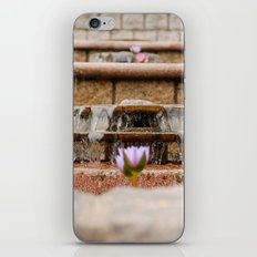 Fountain Flowers iPhone Skin