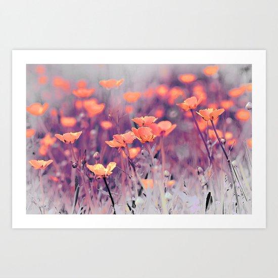 Summer Meadow. Art Print