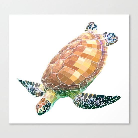 The Green Sea Turtle (Colored) Canvas Print