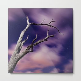 Midnight Dream Metal Print