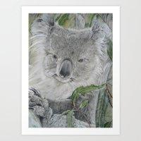 koala Art Prints featuring Koala by Cordula Kerlikowski