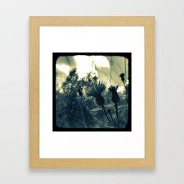 "8x8"" Thistles Print Framed Art Print"