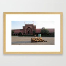 Palace for the Street Queen Framed Art Print