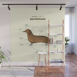 Anatomy of a Dachshund Wall Mural