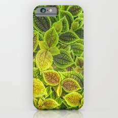 Friendship plant cellphone case by photosbyhealy