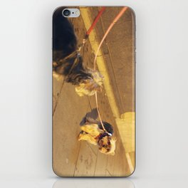 Cute Yorkshire lovers iPhone Skin