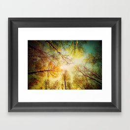 Rest in the forest Framed Art Print