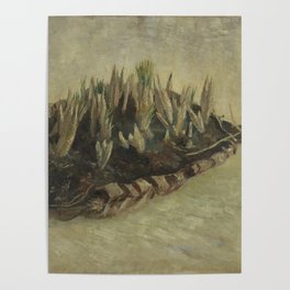Basket of Crocus Bulbs Poster