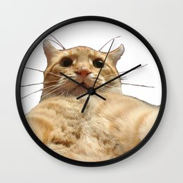 Cat Selfie Wall Clock