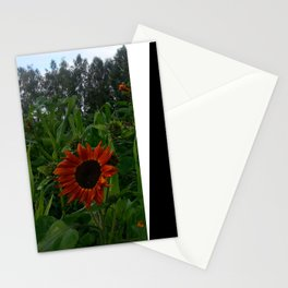 Sunflower and corn Stationery Cards