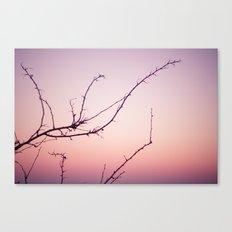 the dusk Canvas Print