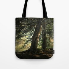 Forest Wakening. Tote Bag