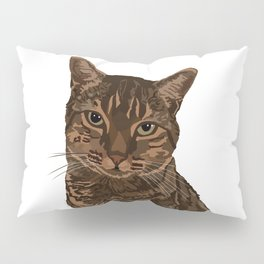 Chazzy the former Toronto Street cat Pillow Sham