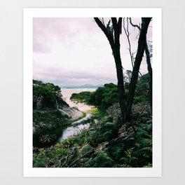 Squeaky Beach, Wilsons Promontory National Park, Victoria, Australia Art Print