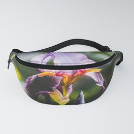Finding Flowers III. Violet Iris Flower Photograph Fanny Pack