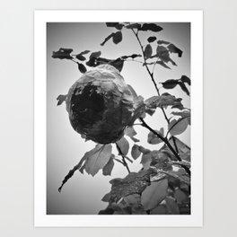 Dark Flower Art Print