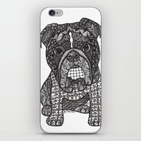 english bulldog iPhone & iPod Skins featuring  Inspired English Bulldog by DiAnne Ferrer