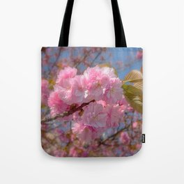 Cherry Blossom. Pink flowers Tote Bag