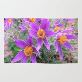 lilac spring flowers Rug