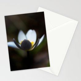 Blurred Mayflower Stationery Cards