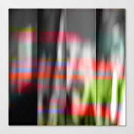 veiled colors Canvas Print