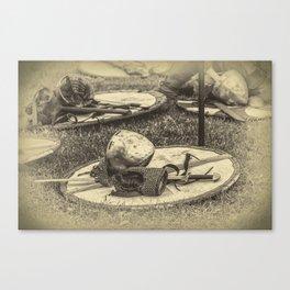 Viking armor Canvas Print