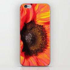 Blaze of Color iPhone & iPod Skin