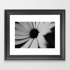 Black Daisy Framed Art Print