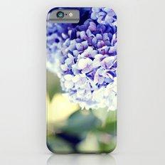 Purple Hydrangeas iPhone 6 Slim Case