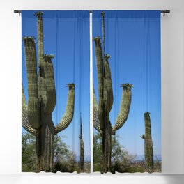 In The Sonoran Desert Blackout Curtain