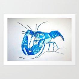 Common Yabby Art Print