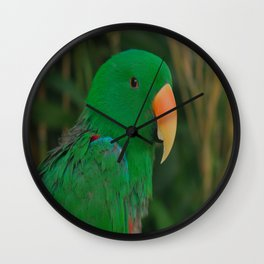 Green Eclectus Parrot Wall Clock