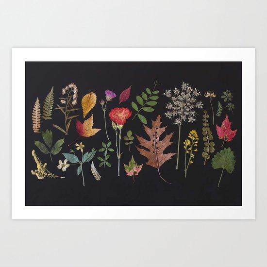 Plants + Leaves 4 Art Print