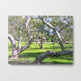 Tree Grove  Metal Print