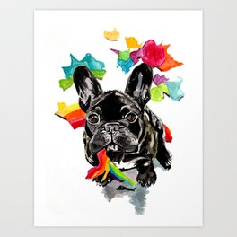 When a dog catches a rainbow Art Print