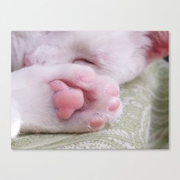 Toe beans Canvas Print