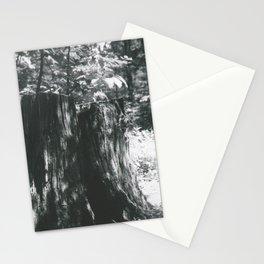 Stump Stationery Cards