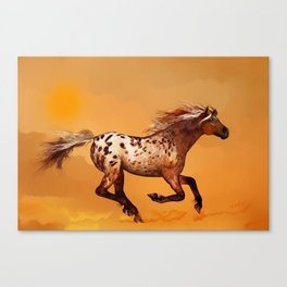 HORSE - An Appaloosa called Ginger Canvas Print
