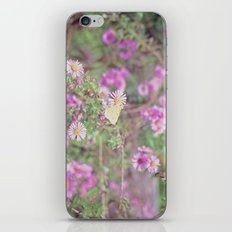 Earlybird iPhone & iPod Skin