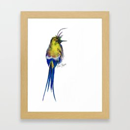 Yellow Hummingbird Framed Art Print