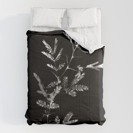 Meshes of the afternoon Comforters