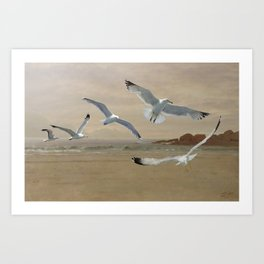 Seagulls Flying Along the Beachfront Art Print