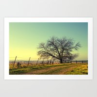 texas Art Prints featuring Texas by Ruby Del Angel