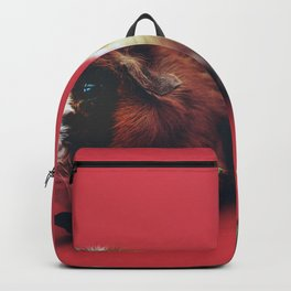 TWO BROWN AND BEIGE HAMSTERS WALLPAPER Backpack